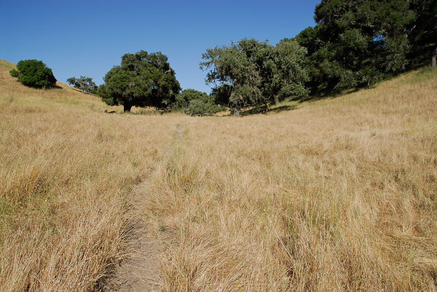 price-ranch-landscapes-006