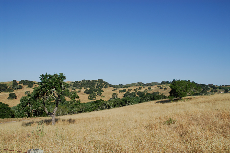 price-ranch-landscapes-008